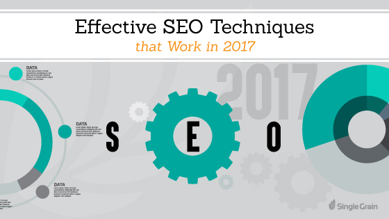 Effective SEO Techniques that Work in 2017 - Business & Personal Tips